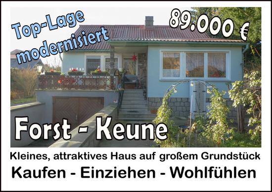 Forst - Keune: Kleines, attraktives Haus auf großem Grundstück in guter Lage